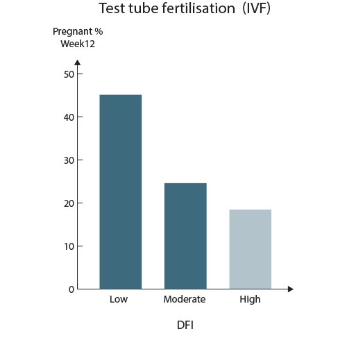 Test Tube Fertilisation IVF